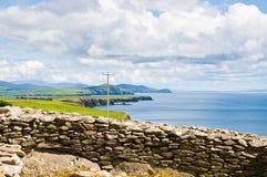 Dingle τοπίο χερσονήσων, κοβάλτιο ιρλανδική αγελάδα της Ιρλανδίας Στοκ φωτογραφία με δικαίωμα ελεύθερης χρήσης