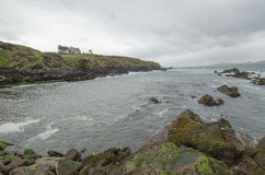 Dingle Co.Kerry, Irland Royaltyfri Fotografi