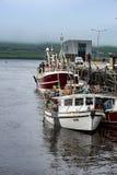 DINGLE IRLAND - AUGUSTI 21, 2017: Irländskt hamnstadlandskap i dinglen, ståndsmässiga Kerry, Irland Fotografering för Bildbyråer