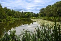 Dingle jezioro w targowym miasteczku Sandbach Anglia Obrazy Stock