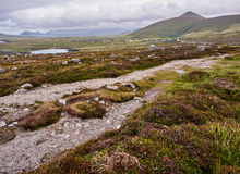 The Dingle mountains on a windy day. Mountains near Clogher, Dingle, on a stormy and cloudy day stock images