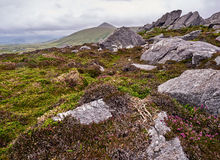 The Dingle mountains on a windy day. Mountains near Clogher, Dingle, on a stormy and cloudy day stock photo