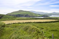 Dingle peninsula fields on the wild atlantic way Royalty Free Stock Image
