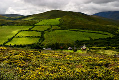 Dingle peninsula, Ireland Royalty Free Stock Photography