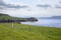Dingle peninsula and sheep on the wild atlantic way Stock Images