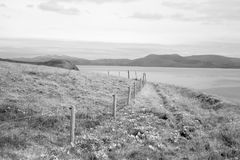 Dingle peninsula fence on the wild atlantic way Royalty Free Stock Images