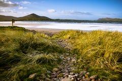 Dingle plaża Zdjęcia Stock