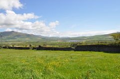 Dingle ståndsmässiga Kerry, Irland Arkivfoto