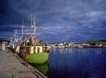 Dinglehamn Irland Arkivbild