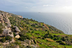 Dingli cliffs Royalty Free Stock Photography
