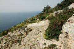 Dingli cliffs in Malta. Great Dingli cliffs in Malta Stock Photo