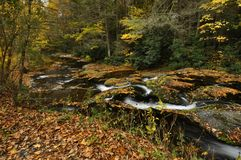 Dingmans Nebenfluss im Herbst Lizenzfreie Stockfotos