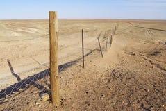 在内地澳大利亚人的Dingoe篱芭 免版税图库摄影