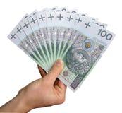 Dinheiro à disposição Fotografia de Stock