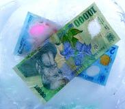 Dinheiro?.(2) Fotografia de Stock Royalty Free