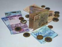 Dinheiro brasileiro Imagem de Stock Royalty Free