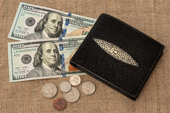 Dinheiro da bolsa Fotografia de Stock Royalty Free