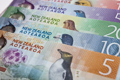 Dinheiro de Nova Zelândia foto de stock