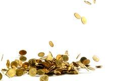 Dinheiro de queda isolado no fundo branco, busin das moedas de ouro Imagem de Stock