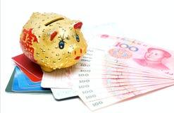 Dinheiro e caderneta bancária Fotografia de Stock