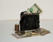 Dinheiro e carteira -2 Foto de Stock
