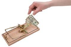 Dinheiro e o Mousetrap Fotografia de Stock