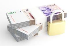 Dinheiro e segurança Fotografia de Stock Royalty Free