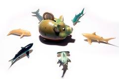 Dinheiro e tubarões Fotografia de Stock