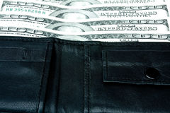 Dinheiro em uma bolsa Fotografia de Stock