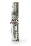 Dinheiro entwisted pela corrente Imagem de Stock Royalty Free