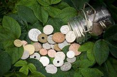 Dinheiro fresco Imagens de Stock Royalty Free