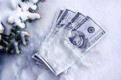Dinheiro frio Fotos de Stock Royalty Free
