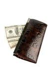 Dinheiro na carteira da mulher Fotos de Stock