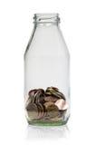 Dinheiro na garrafa Imagem de Stock Royalty Free