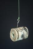 Dinheiro no fishook Foto de Stock