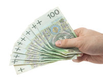 Dinheiro polonês à disposicão. Trajeto de grampeamento incluído. Fotografia de Stock