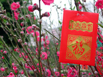 Dinheiro vermelho do saco Foto de Stock Royalty Free