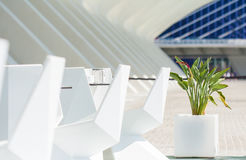 Dining in a futuristic style in the open air in Valencia. The modern design of the future in the city of arts and Sciences Stock Photos