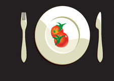 Dining Plate With Tomatoes Royalty Free Stock Photo