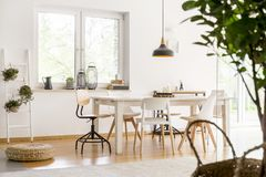 Dining room with braided pouf. Plants in flowerpots hanging on a ladder in dining room with braided pouf on wooden floor Royalty Free Stock Photos