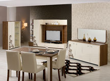 Dining room furniture. Modern living room with details Royalty Free Stock Images