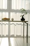 Dining table in light, sunny room Royalty Free Stock Images