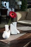 Dining table in restaurant. Condiments and flower on dining table in cozy restaurant stock images