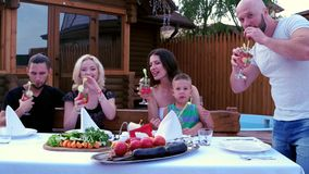 Dinner al fresco in a circle of relatives of people, happy family, lunch, cheerful gatherings with parents, children stock video