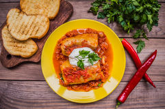 Dinner with cabbage rolls in tomato sauce decorated  parsley. Wooden rustic background. Top view. Close-up Stock Photography