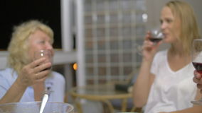 Dinner in the family circle. Slow motion steadicam shot of a family clanging glasses with red wine during dinner. Enjoyable evening with close people stock footage