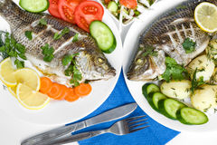 Dinner with fishes Stock Images