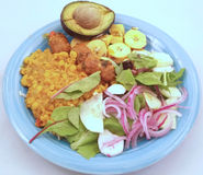 Dinner Plate. A dinner plate with rice, plantain, salad and avocado Stock Photography