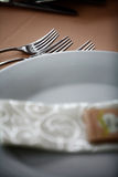 Dinner in a restaurant Royalty Free Stock Photos