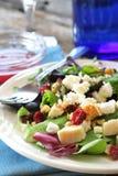 Dinner Salad Royalty Free Stock Photos